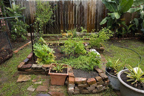Eco-friendly gardening ideas from modest home