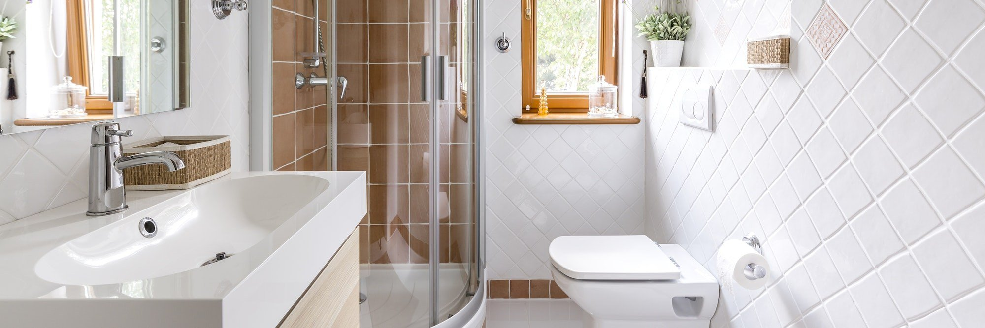 Small but functional bathroom with shower