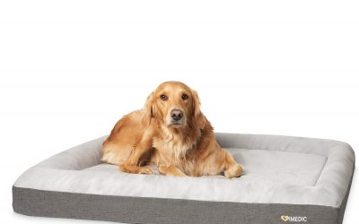 iMedic Premium Orthopaedic Memory Foam Dog Bed – Waterproof, Washable, Deluxe Finish – For Large Size Dogs 27-42kgs